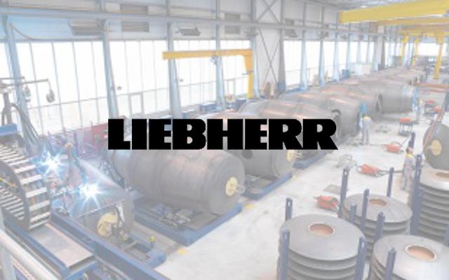 Liebherr - Referenz Bestandsoptimierung